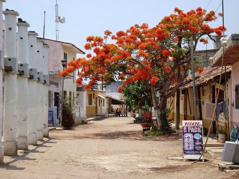 Мескальтитан – мексиканская Венеция, где креветок сушат прямо на тротуаре