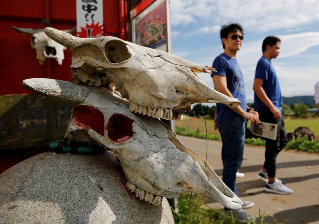 Японская Фукусима станет туристической достопримечательностью?