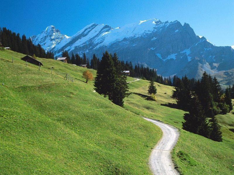 Швейцарцам надоели горные лыжи