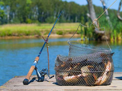 Где ловить рыбу в Москве и области