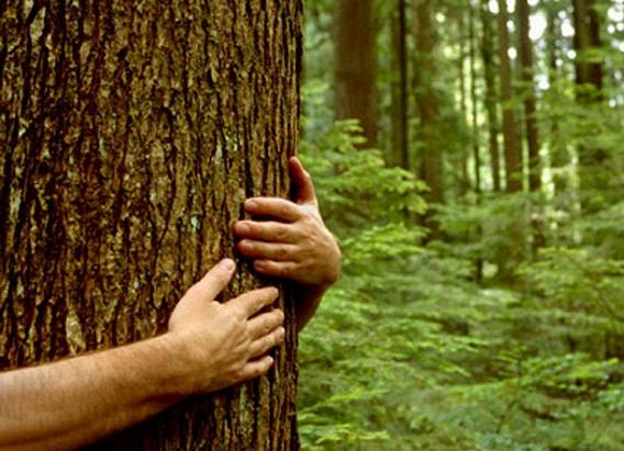 Легко ли быть экотуристом