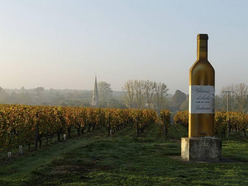 Бордо: прогулки с винной картой