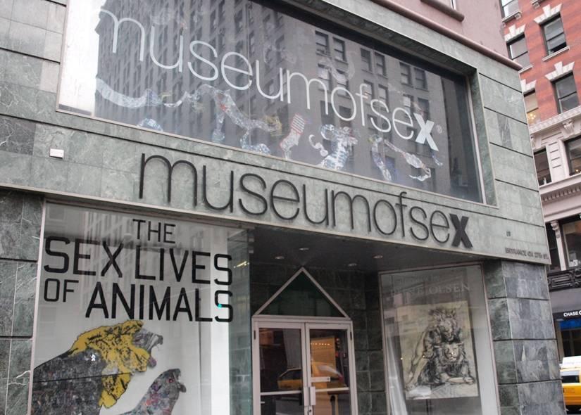 Где лучше изучать историю секса: Топ-10 сексуальных музеев