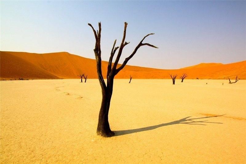 Травмированный путешественник полз по пустыне четыре дня