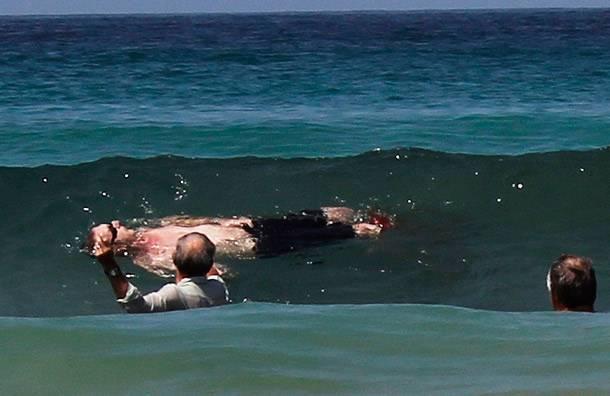 Огромная хищница почти раскусила пловца пополам