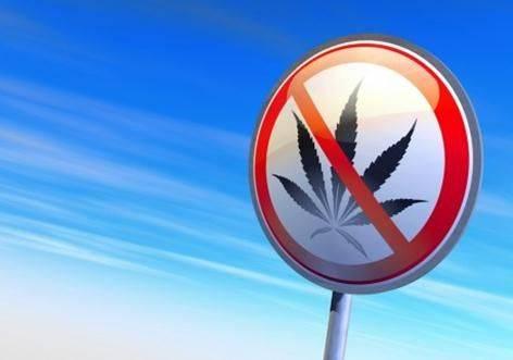 Страны, в которых легализованы наркотики
