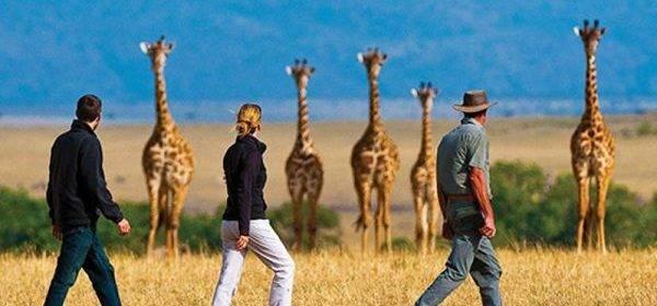 Туристов в мире становится все больше
