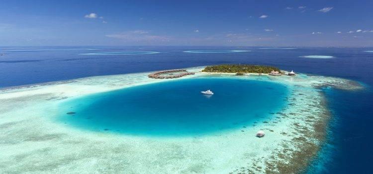 Забота о кораллах в Baros Maldives