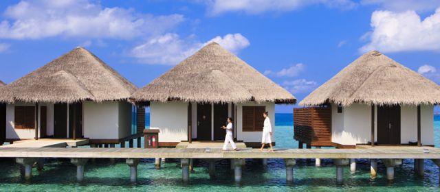 Спа-ритуал Винотерапия в Velassaru Maldives