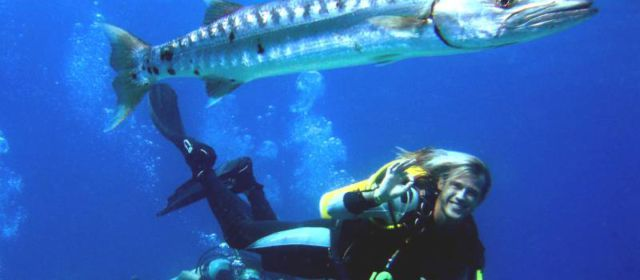 Подводный калейдоскоп на Мальдивах
