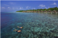 Снорклинг сафари в Kuramathi Island Resort Maldives