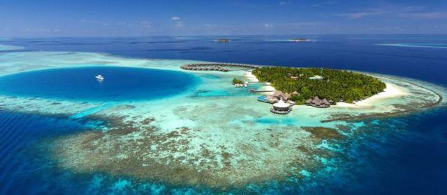Исследование океанических скатов-мант в отеле Baros Maldives
