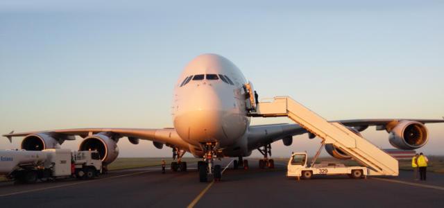 Регулярные рейсы в Каир – во второй половине февраля