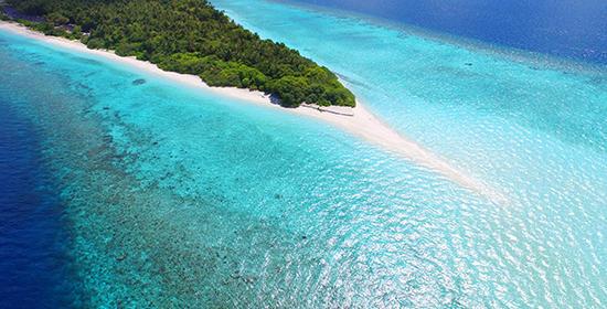 Dhigali Maldives — экстремальная встреча с морским дьяволом!