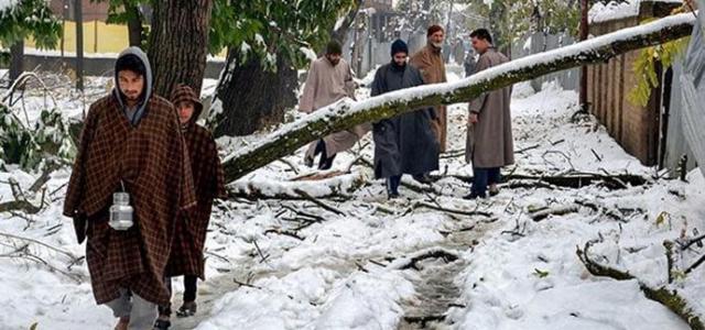 Впервые за 10 лет в Индии выпал снег