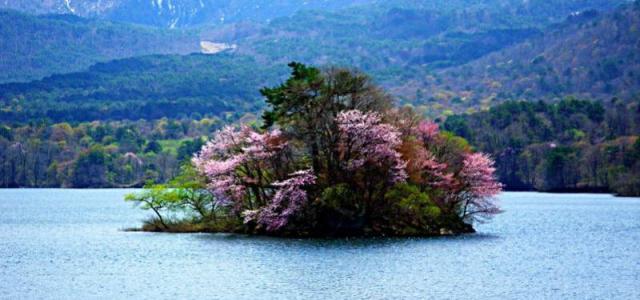 Бандай-Асахи – край лесных озёр