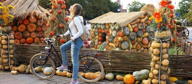 Где вас накормят в октябре 2019 – ТОП Гастрофестивалей России