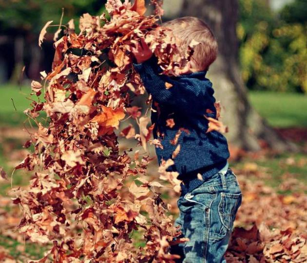 Куда сходить со своими детьми в предстоящие выходные – 12 и 13 октября 2019