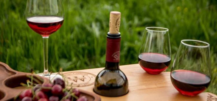 Успей на винный фестиваль в Праге