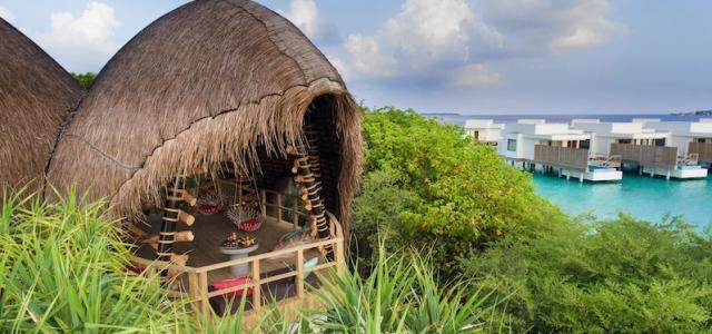 Все для любителей кофе в Dhigali Cafe на острове Dhigali
