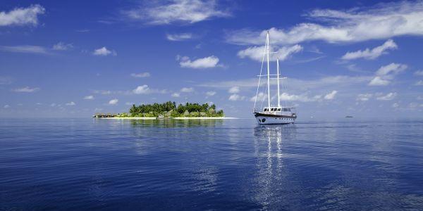 Kandolhu Maldives воспользовался пандемией для восстановления морской флоры и фауны