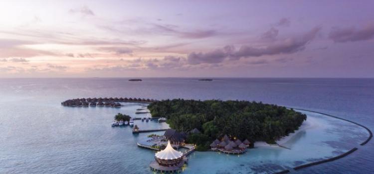 Помогайте коралловым рифам вместе с BAROS MALDIVES